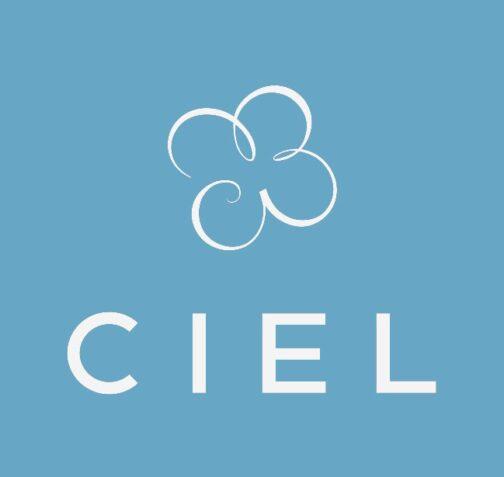 Организация Ciel: отзывы, обзор и секретные схемы : https://stablereviews.com