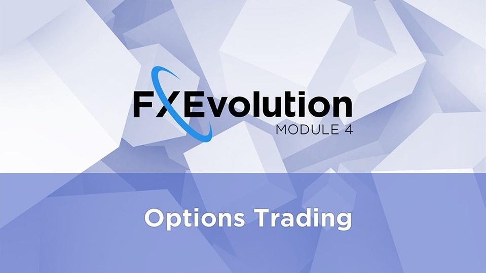 FX Evolution обзор
