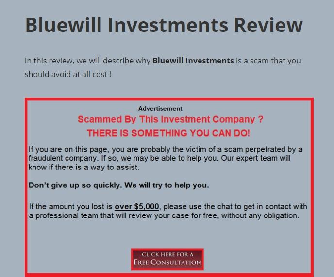 Отзывы о Bluewill Investments