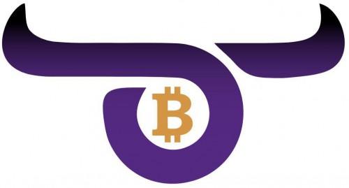 Обзор компании Crypto Bull: отзывы, как вывести деньги, торговые условия : https://stablereviews.com