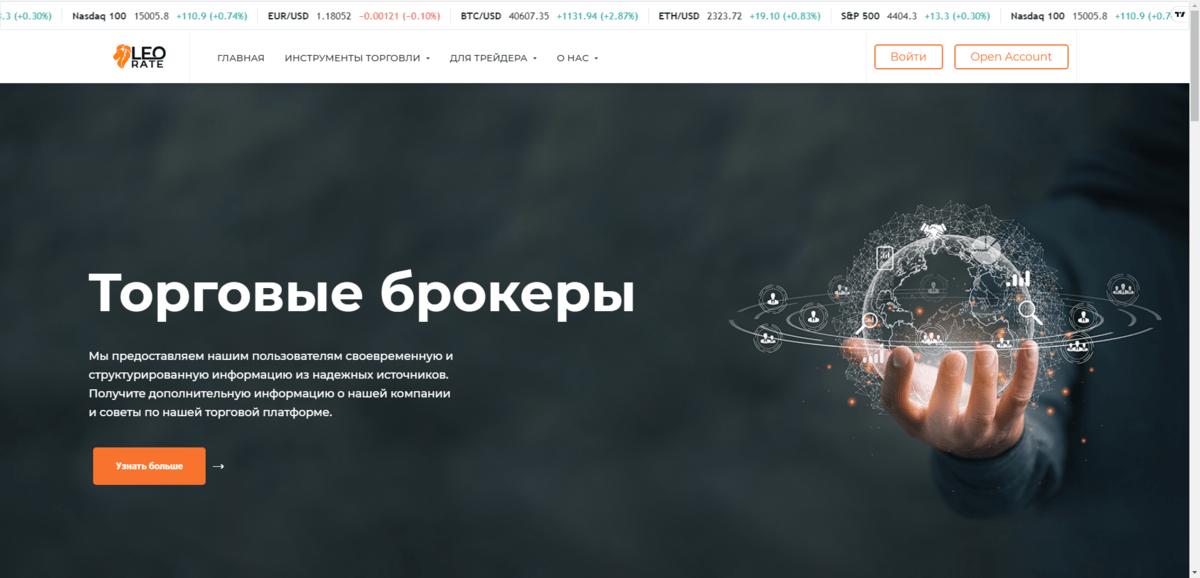 Обзор компании Leorate